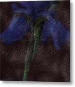 Dusty Iris Metal Print