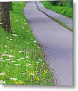Dutch Bicycle Path - Digital Painting Metal Print by Carol Groenen
