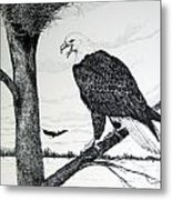 Eagle At Nest Metal Print