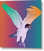 Eagle Five Metal Print