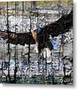 Eagle Imprint Metal Print