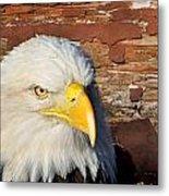 Eagle On Brick Metal Print
