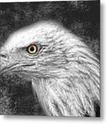 Eagle Two Metal Print