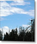 Eagles Nest Lake Tahoe Metal Print