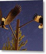 Eagles Suspended Metal Print