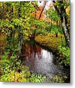 Early Autumn In Maine Metal Print