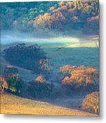 Early Morning Colors Metal Print