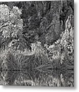 Early Morning Light Black And White Metal Print