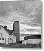 Early Morning On The Farm Bw Metal Print