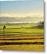 Early Morning Pastoral Scene With Keyline Plowing Near Warwick, Queensland, Australia Metal Print