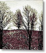 Early Morning Trees Metal Print by Miss Dawn