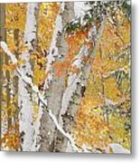 Early Snowfall Metal Print