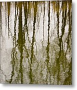 Earth Sky Water Metal Print