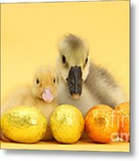 Easter Duckling And Gosling Metal Print