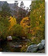 Eastern Sierras Metal Print