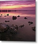 Edge Of A New Day Metal Print