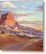 Edge Of The Desert Metal Print