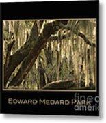 Edward Medard Park Metal Print