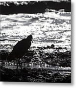 Egret Silhouette  Metal Print