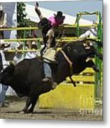 Rodeo Eight Seconds Metal Print