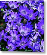 Electric Indigo Garden Metal Print