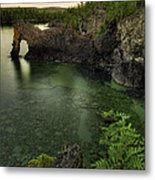 Elephant Rests In The Green Lagoon   Metal Print