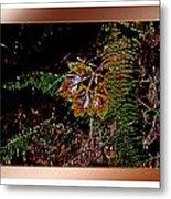 Elwha Leaf Metal Print