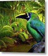 Emerald And Blue Toucan  Metal Print