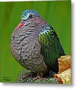 Emerald Ground Dove Metal Print