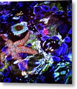 Emerged Starfish Metal Print