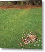 Empty Lawn With A Little Heap Of Leaves Scraped Together Metal Print