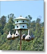 Empty Nests Metal Print