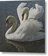 Enamored Metal Print