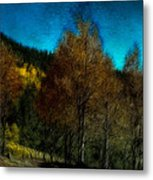 Enchanted Evening In The Forest Metal Print