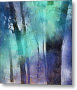 Enchanted Forest. Painting With Light Metal Print