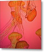 Enchanted Jellyfish 3 Metal Print
