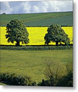 The Cotswolds 2 Metal Print