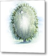 Enlightment Of The Willow Metal Print by Nafets Nuarb
