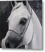 Equestrian Silver Metal Print