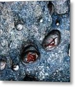 Eroded Rock With Dried Leaves Metal Print