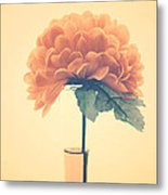 Estillo - 01i2 Metal Print by Variance Collections