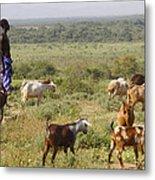 Ethiopia-south Tribal Goat Herder Metal Print
