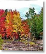 Even Cloudy Days Sing In The Adirondacks 1 Metal Print