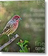 Evening Finch Greeting Card With Verse Metal Print