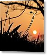 Evening In Dingle Metal Print