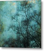 Evening Sky Metal Print by Judi Bagwell