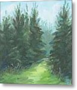 Evergreen Field Metal Print