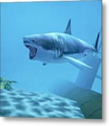 Example Of Reality Centre Graphics, Shark Metal Print