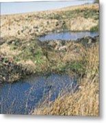 Exmoor Blanket Bog Metal Print
