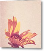 Expression - S07ct01 Metal Print by Variance Collections